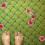 Aqueous Ozone Cleans Carpet!